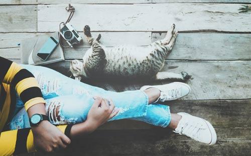 millennial y su gato