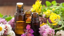 Essential Oils May Replace Antibiotics
