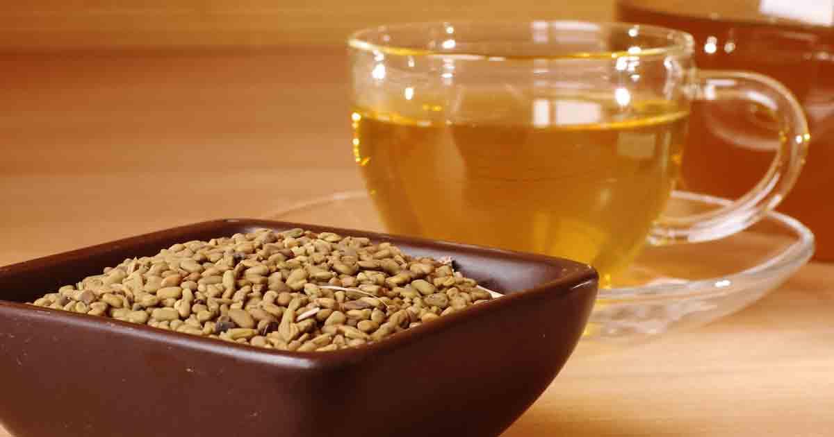 пажитник чай для похудения