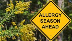 Spring Fever — How to Treat Allergies