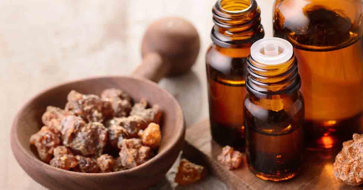 Herbal Oil: Myrrh Oil Benefits and Uses
