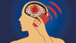 brain tumors cellphones