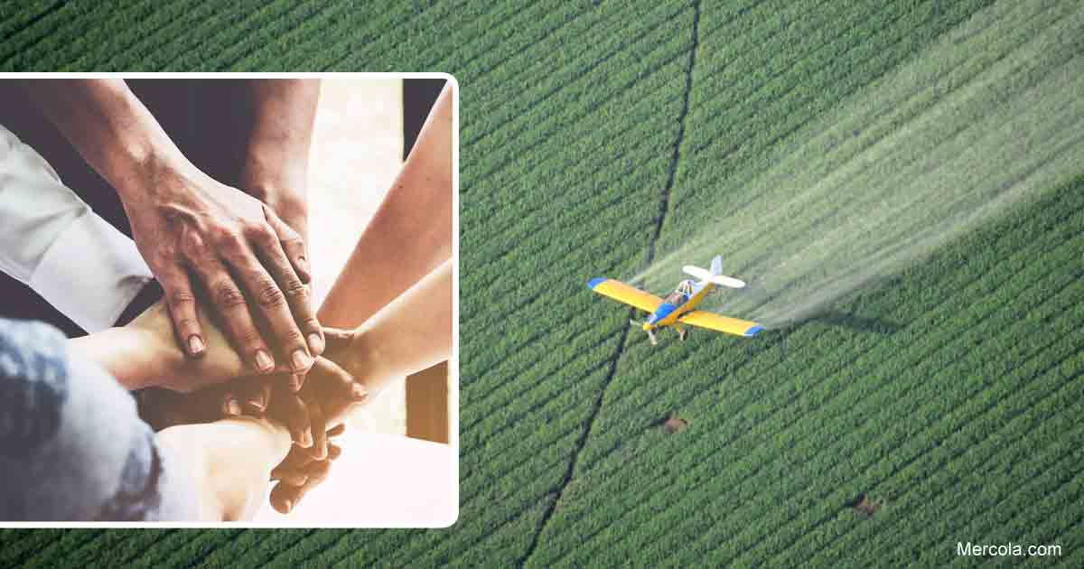 Pesticide Industry Squashes Local Rights