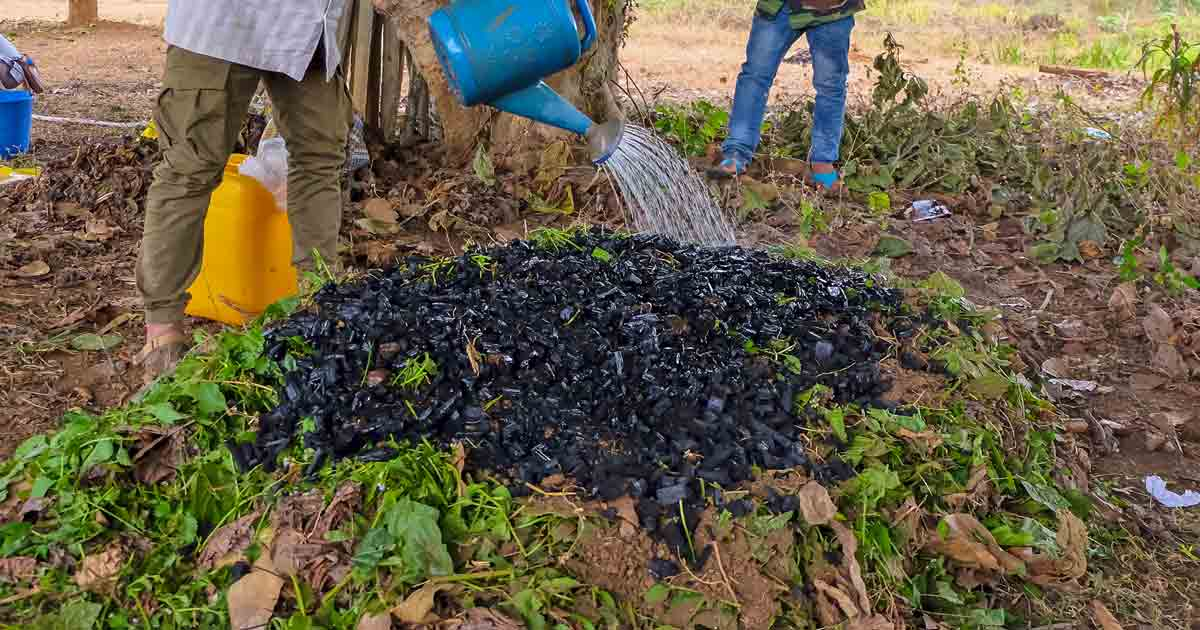Importance of Biochar and Regenerative Systems for Soil Health