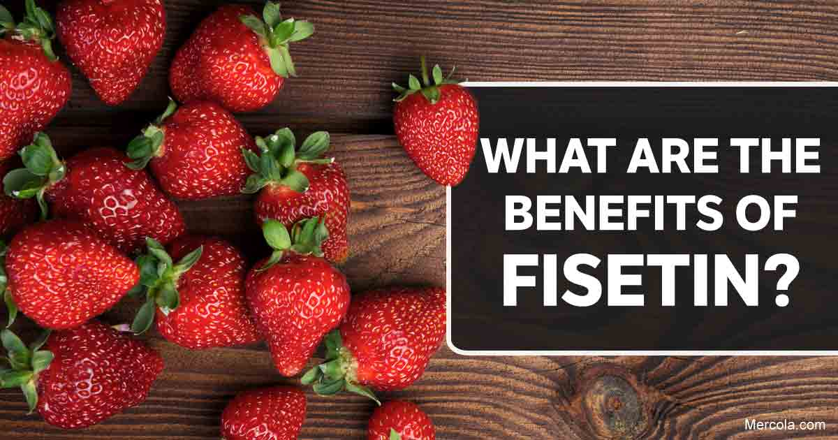 What Are the Benefits of Fisetin?