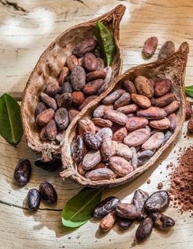 What Is Cacao Good For