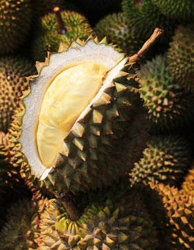 What Is Durian Good For