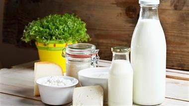 full fat dairy benefits