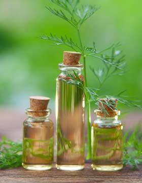 Dr  Mercola - #1 Natural Health Website