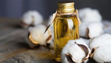 Cottonseed Oil: America's Original Vegetable Oil