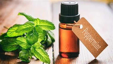 peppermint oil for ibs