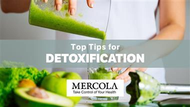 Top Tips to Detox Your Body