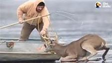 Guys Rush Onto Thin Ice to Save a Stranded Deer