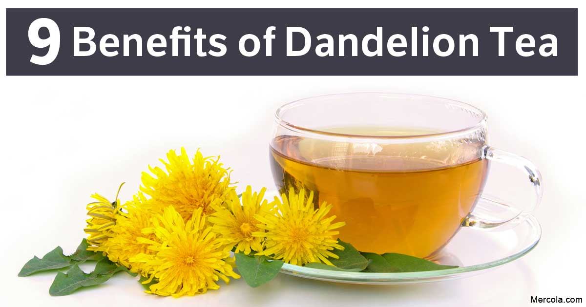 Dandelion Tea: Benefits and Nutrition Facts