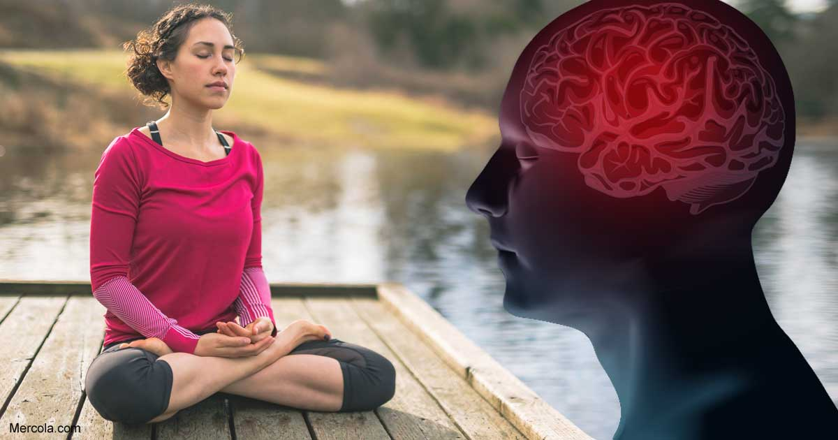 Meditation Alters Your Brain Structure