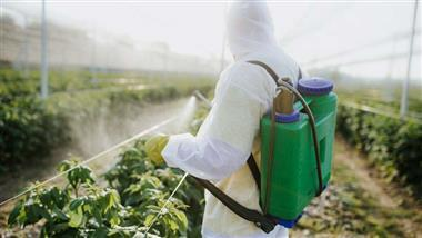 glyphosate safety