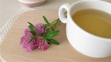 Balancing Hormones, Easing PMS and More: Red Clover Tea  Benefits You Can Count On