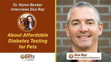 Is Your Vet Offering A1C Diabetes Testing to Monitor Your Pet's Health?