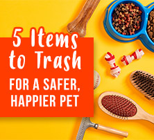 5 Items to Trash