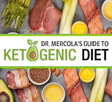 Guide to Ketogenic Diet
