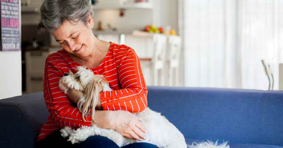 How Alzheimer's patients respond to therapy dogs