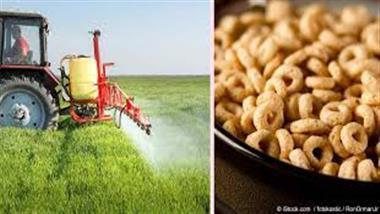 Many cereals tainted with toxic weed killer