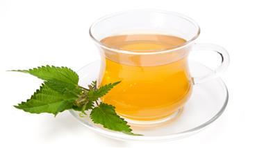 The 5 Potential Benefits of Drinking Nettle Tea