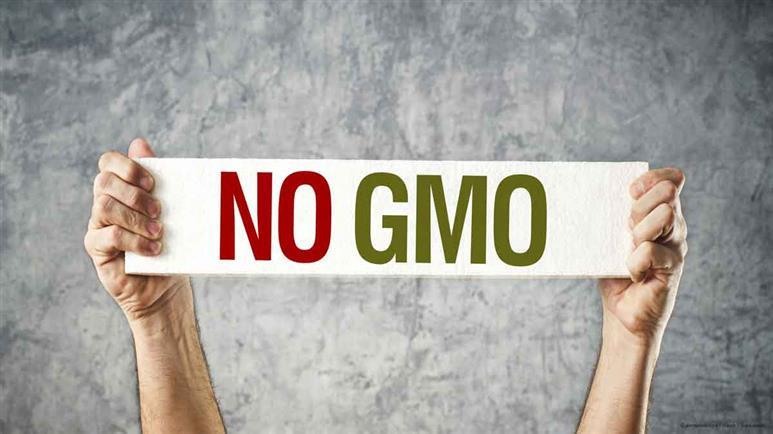 GMOs Have Got to Go: 10 Ways to Avoid Them