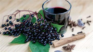 elderberries confirmed as immunity booster
