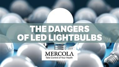 LEDs Have Damaging Health Effects, French Assessment Says