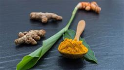 turmeric for pets