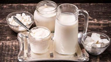 fermented dairy products