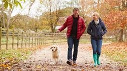 walking your dog increase your physical activity