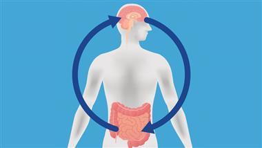link between alzheimers and gut