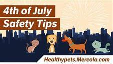 Fireworks and Chaos - Protect Your Pet From Harm