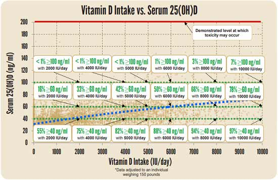Apport de vitamine D vs sérum