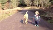 A Boy, a Dog and a Mud Puddle