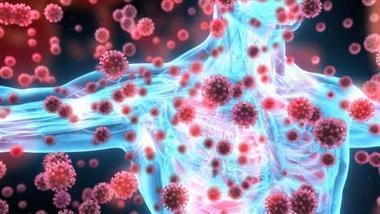 coronavirus antibody dependent enhancement