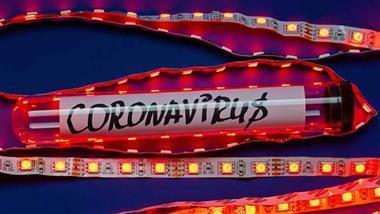 coronavirus chimera