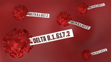 covid-19 delta variant natural immunity