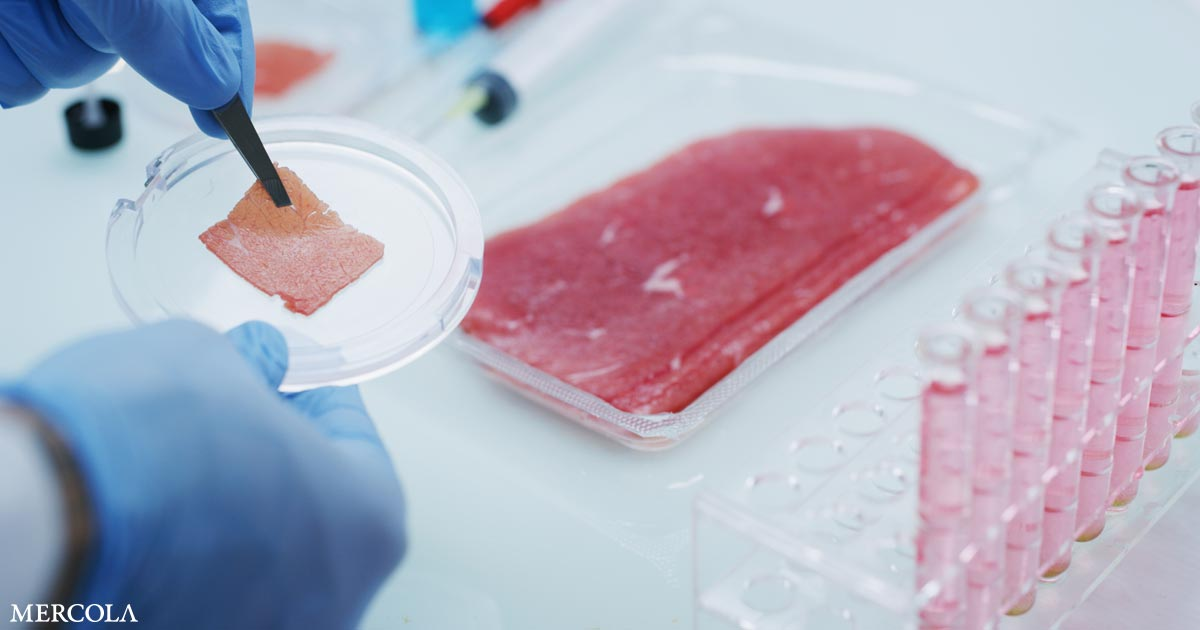 Vat-Grown Protein Is Just Patented Fake Meat