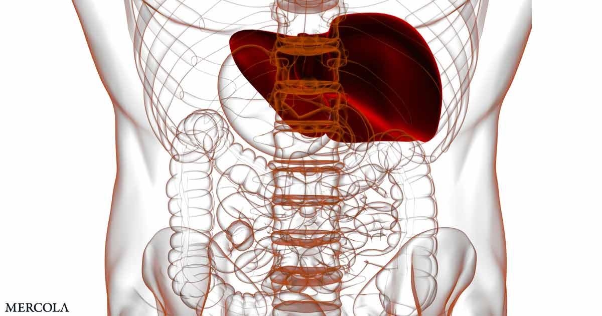 Niacin + Melatonin Support Metabolic Health