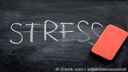 Erasing the word stress on a blackboard