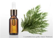 For a Sound Body and Mind, Choose Cypress Oil