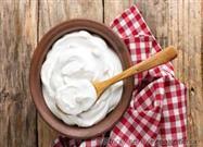 Yogur Alimentos Fermentados