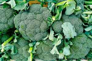 http://media.mercola.com/ImageServer/Public/2099/December/brocolli-benefits.jpg