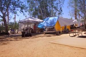 Un Documental Revela los Peligros del Moho Tóxico y de la Enfermedad Relacionada con el Moho