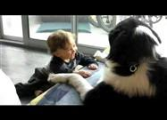 Baby Laughs Hysterically at Newfoundland