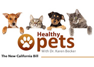 California Assembly Bill AB 272 Could Threaten Your Pet's Life
