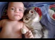 Cute Kitty Adores Baby